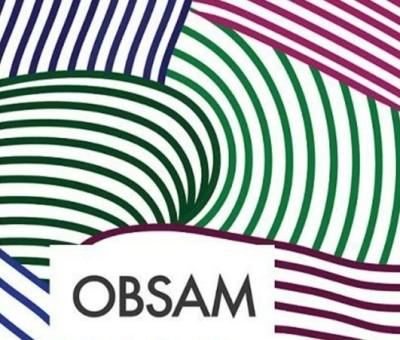 2º Seminário Internacional do OBSAM