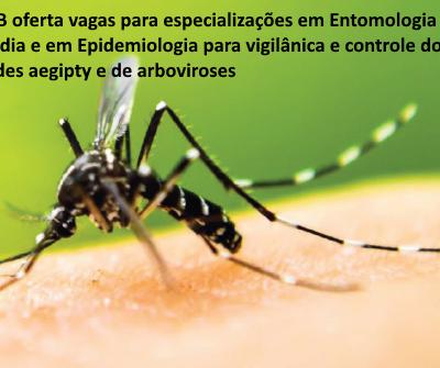 UnB oferta vagas para especializações em Entomologia Médica e em Epidemiologia para vigilância e controle do Aedes aegypti e de arboviroses